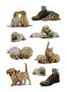 5606 Sticker DECOR Hundewelpen, 10 St.