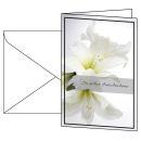 10 sigel Trauerkarten, weiße Amaryllis